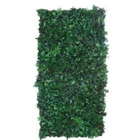 Linfa decor Parete vegetale Pitosporo