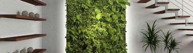 pareti verdi, parete verde,pareti verdi verticali
